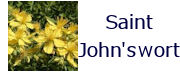 saintjohnswort